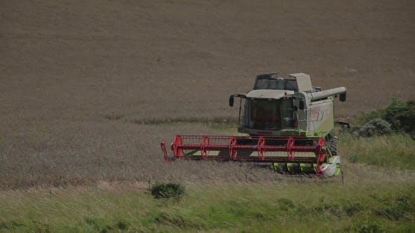 Thumbnail for Harvester In France