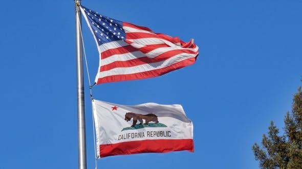 Thumbnail for Calirofnia & USA Flag