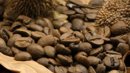 Thumbnail for Roasted Coffee and Dry Leaves 4