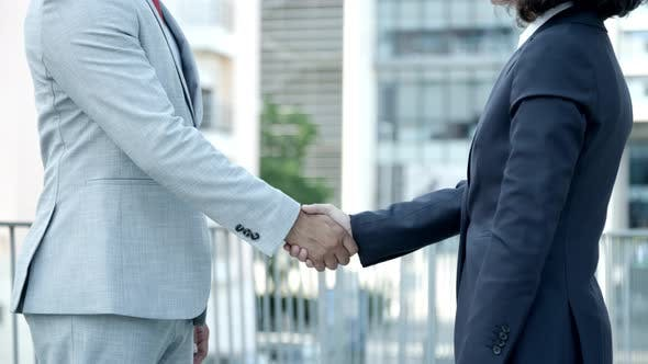 Thumbnail for Slow Motion Shot of Business Partners Shaking Hands