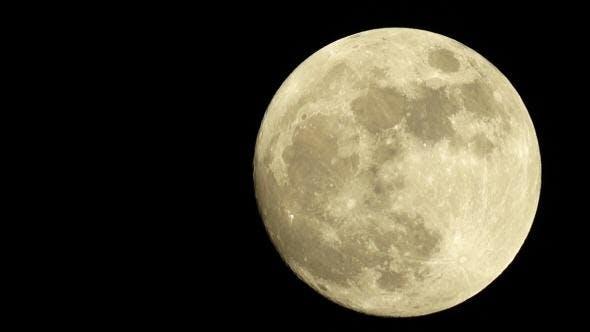 Thumbnail for Large Full Golden Moon