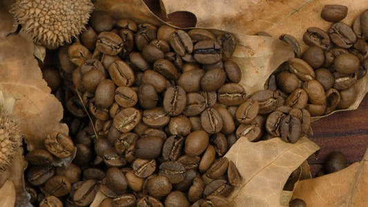 Thumbnail for Roasted Coffee and Dry Leaves 1