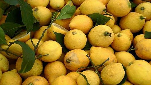 Thumbnail for Lemons