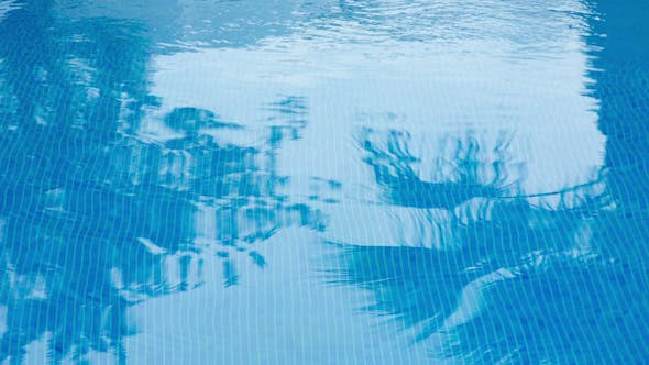 Thumbnail for Swimming Pool Holidays