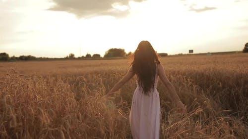 Schöne junge Frau genießt das Leben Wandern auf einem Weizenfeld bei Sonnenuntergang