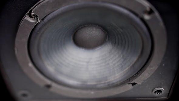 Thumbnail for Speaker Pump 09