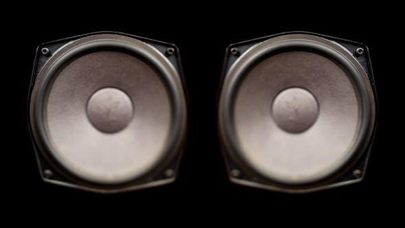 Thumbnail for Speaker Pump 12