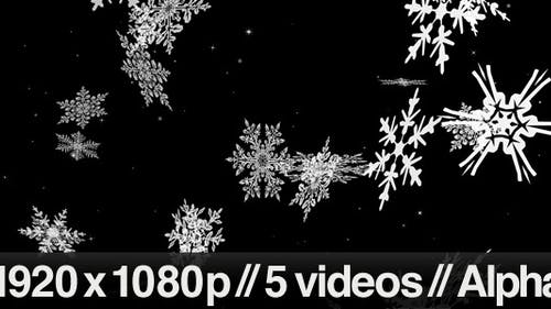 Large Snow Flakes Falling - Series of 5 + Loop