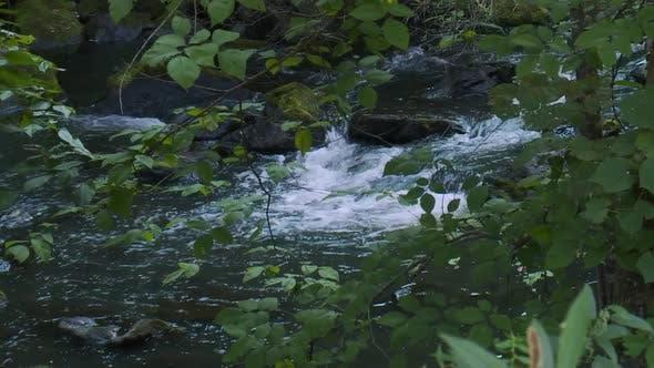 Relaxing Stream Rushing Over Rocks (6 Of 6)