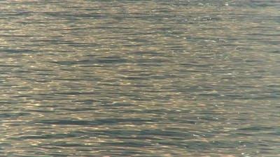 Ocean Ripples