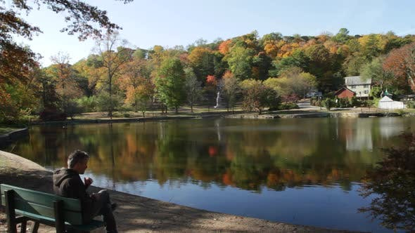 Thumbnail for Breathtaking Fall Foliage (3 Of 6)