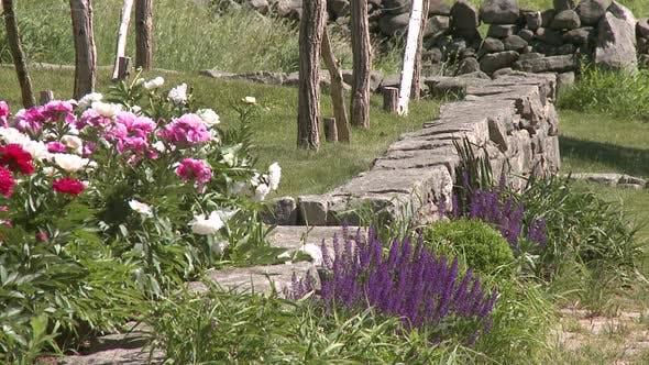 Flowers Blowing In Breeze
