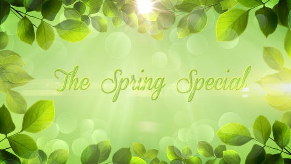 Cover Image for The Spring Special - Promo Pack - Apple Motion