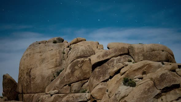 Thumbnail for Joshua Tree Desert Landscape At Night
