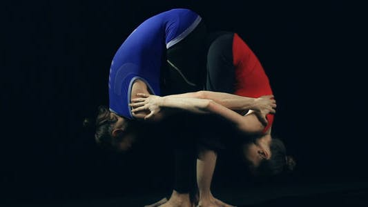 Thumbnail for Double Standing Forward Bend