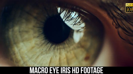 Cover Image for Eye Iris 4