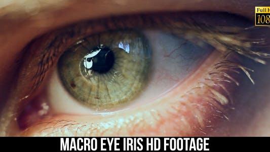 Thumbnail for Eye Iris 5