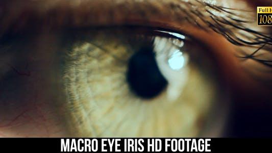 Thumbnail for Eye Iris 6