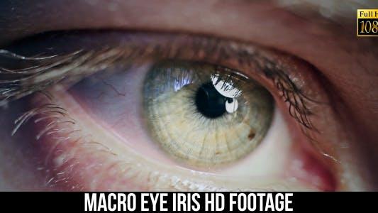 Thumbnail for Eye Iris 7