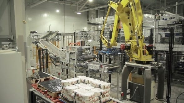 Cover Image for Articulated Robotic Arm At Packaging Line In