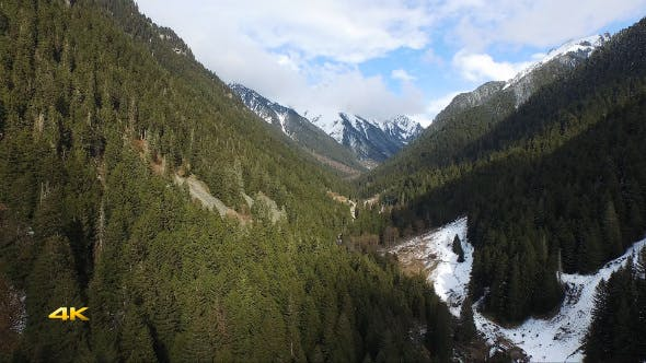 Thumbnail for Aerial Flying Above The Forest in the Valley
