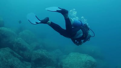Scuba Diving Off Cozumel Island, Mexico, One Of The World's Favourite Dive Destinations 3