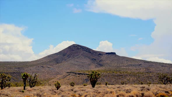 Thumbnail for Mojave National Preserve Daytime 1