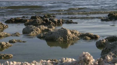 The Salton Sea California