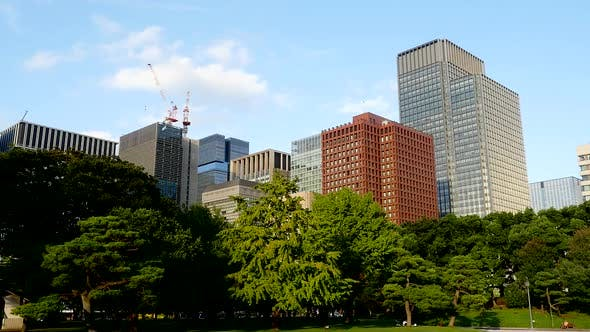 Office Buildings Surrounded By Trees In Central Tokyo 2