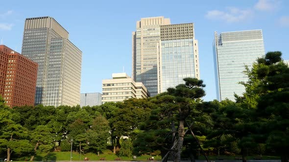 Office Buildings Surrounded By Trees In Central Tokyo Japan 2