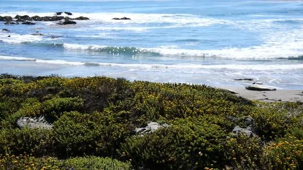 Thumbnail for Big Sur California Coastline - Pazifischer Ozean 3
