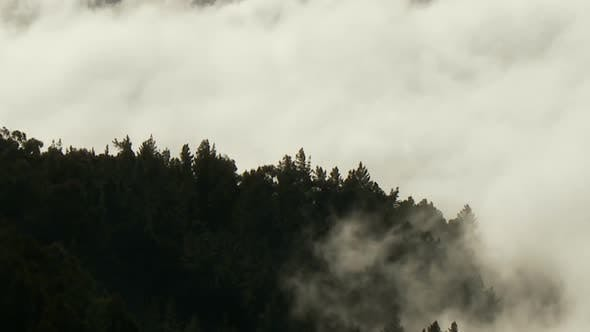 Clouds, Mountains And Trees - Clip 2
