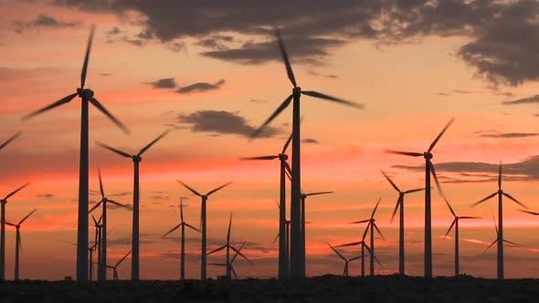 Thumbnail for Power Windmills In The California Desert At Sunset 11