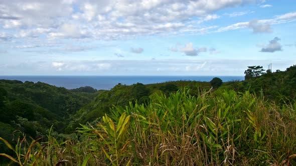 Thumbnail for Hawaiian Bay Maui Hawaii