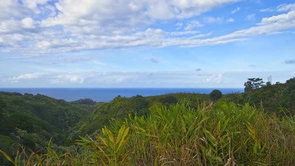 Thumbnail for Tropical Hawaiian Valley 4