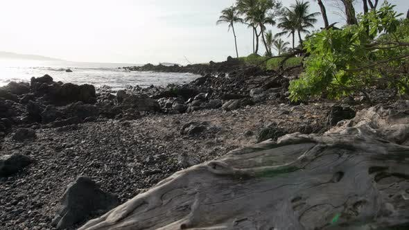 Thumbnail for Hawaiian Beach