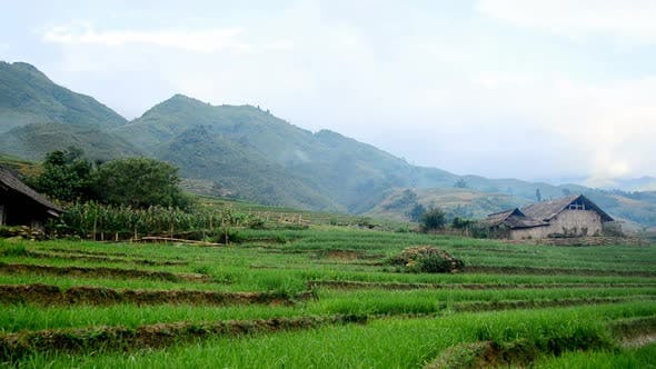 Thumbnail for Farm House With Rice Terraces In Valley -  Sapa Vietnam 2