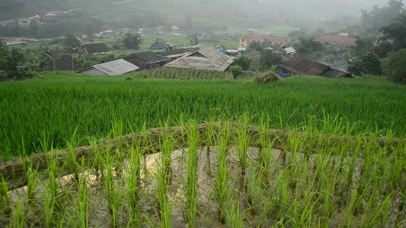 Farm House With Rice Terraces In Valley -  Sapa Vietnam 3