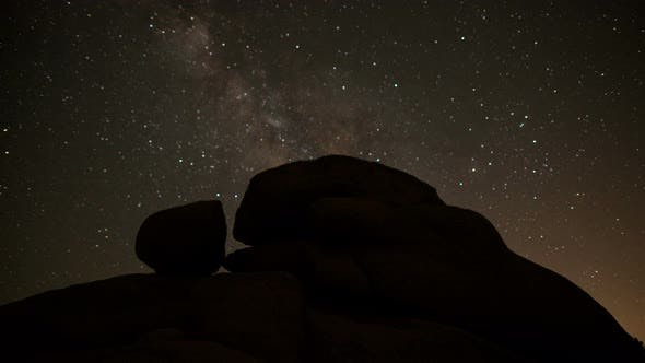 Thumbnail for Joshua Tree At Night 4