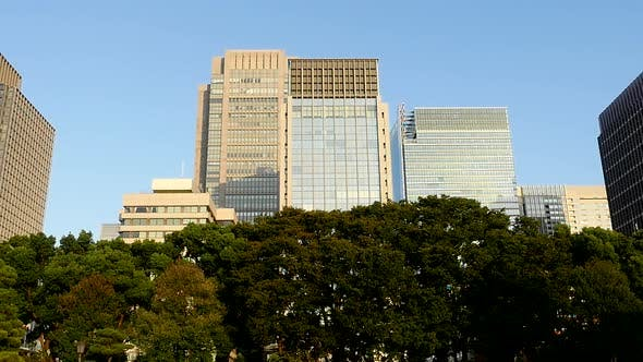 Office Buildings Surrounded By Trees In Central Tokyo Japan 1
