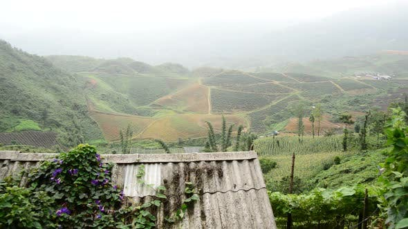 Thumbnail for Scenic Rice Terraces - Northern Mountains Sapa Vietnam 2