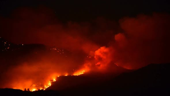 Thumbnail for Time Lapse Of Large Forest Fire At Night 5