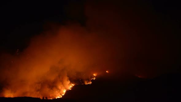 Thumbnail for Time Lapse Of Large Forest Fire At Night 7