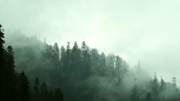 Thumbnail for Quick Mist Shrouding the Mountainside