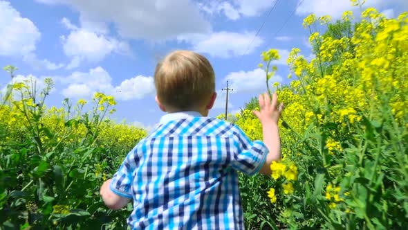 Thumbnail for Happy Child Running in Flowers