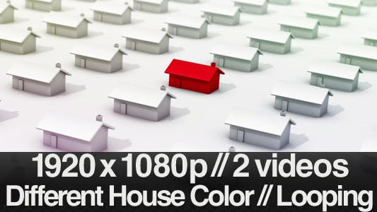 Thumbnail for One House Standing Out Next to Hundred - Looping