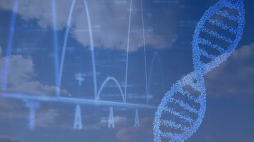Sequencing the genetic code