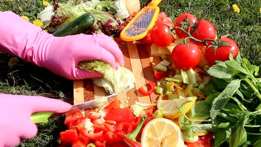 Thumbnail for Chopping Vegetables