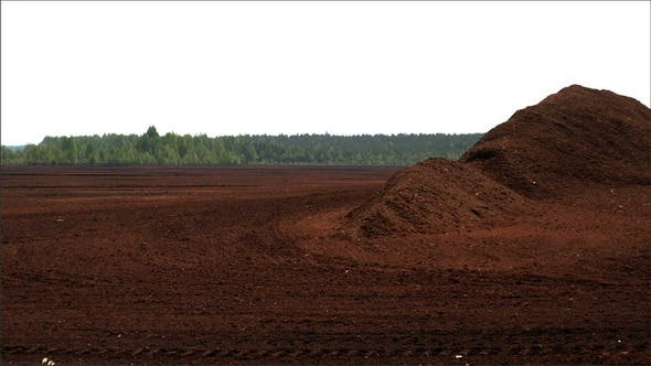 Thumbnail for The View of the Red Peat Soil