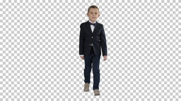 Thumbnail for Little Boy in A Costume with A Bow Tie Walking, Alpha Channel